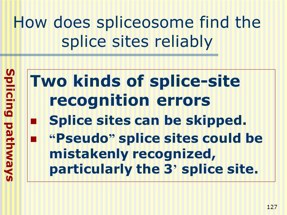 How does spliceosome find the splice sites reliably