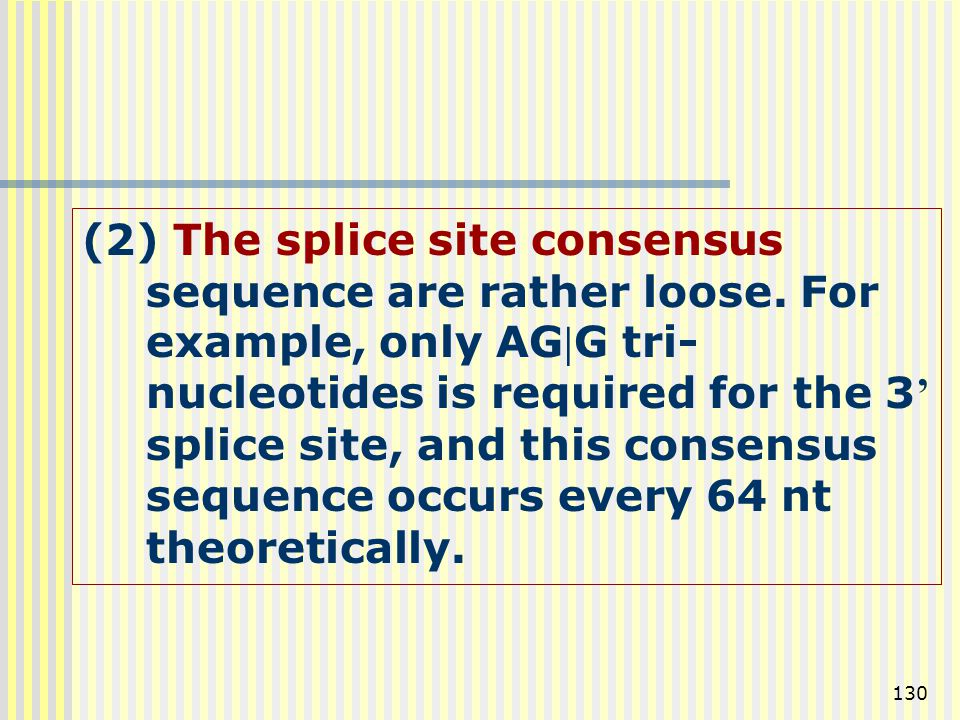 (2) The splice site consensus sequence are rather loose