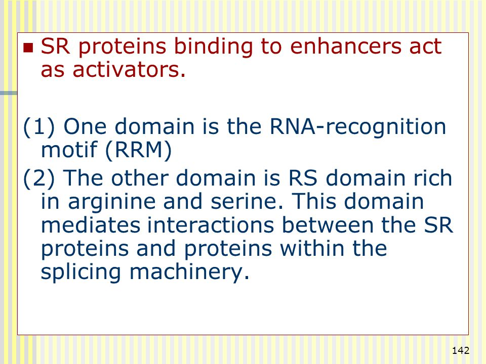 SR proteins binding to enhancers act as activators.