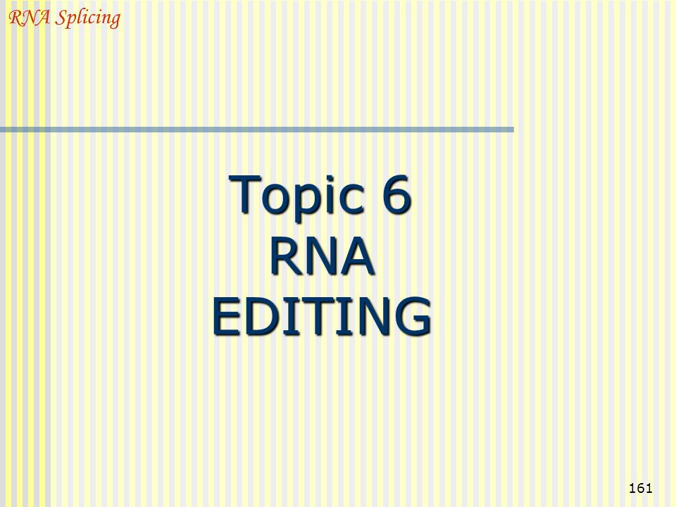 RNA Splicing Topic 6 RNA EDITING
