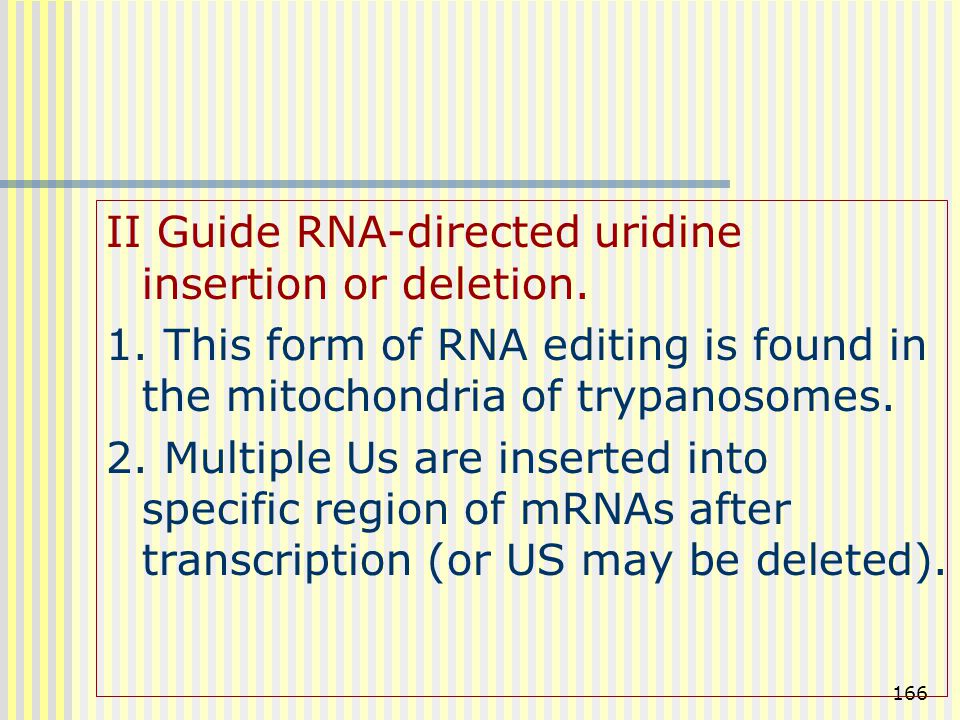 II Guide RNA-directed uridine insertion or deletion.
