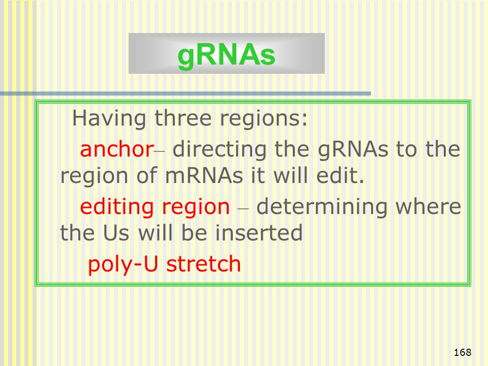 gRNAs Having three regions: