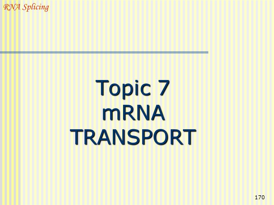 RNA Splicing Topic 7 mRNA TRANSPORT