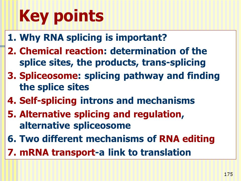 Key points Why RNA splicing is important