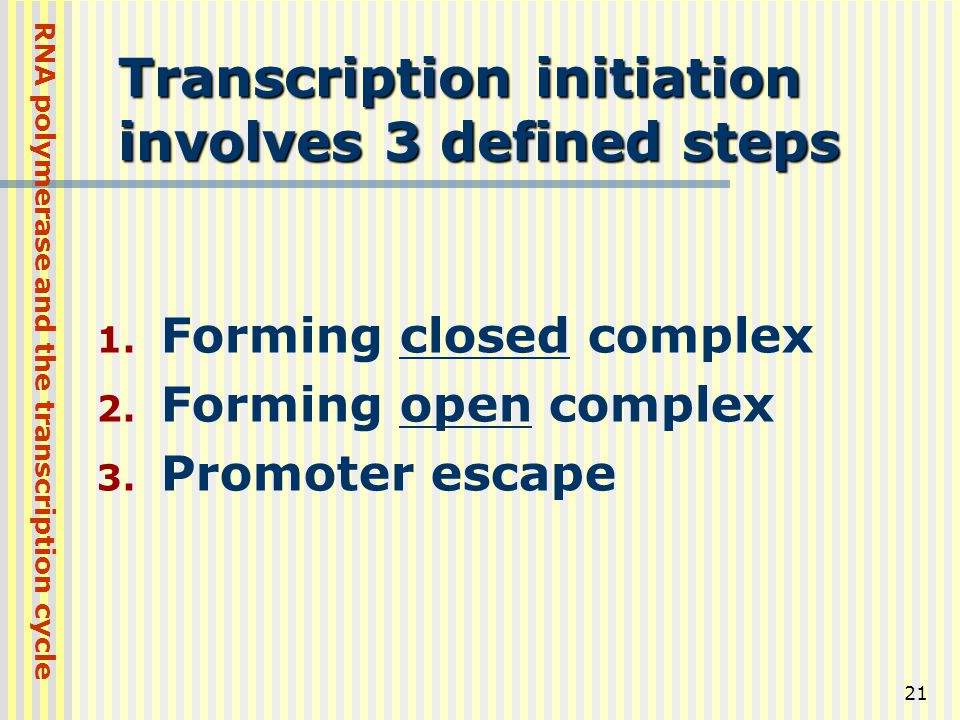 Transcription initiation involves 3 defined steps