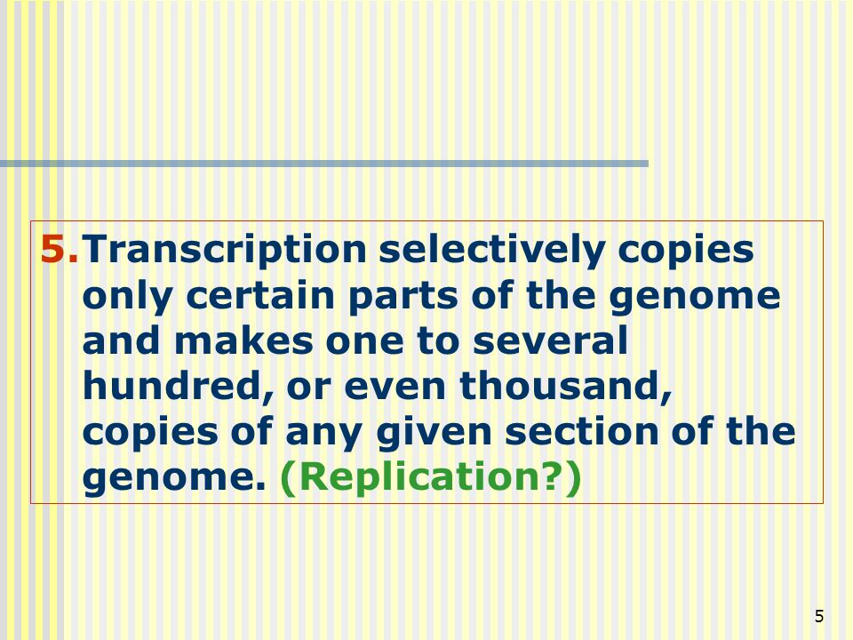 Transcription selectively copies only certain parts of the genome and makes one to several hundred, or even thousand, copies of any given section of the genome.