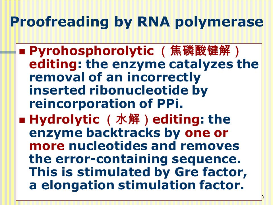 Proofreading by RNA polymerase