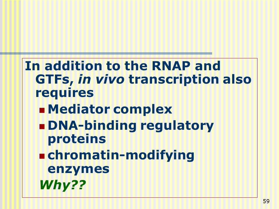 In addition to the RNAP and GTFs, in vivo transcription also requires