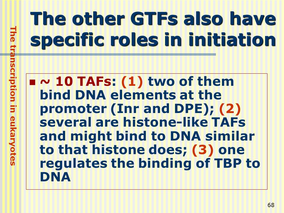 The other GTFs also have specific roles in initiation
