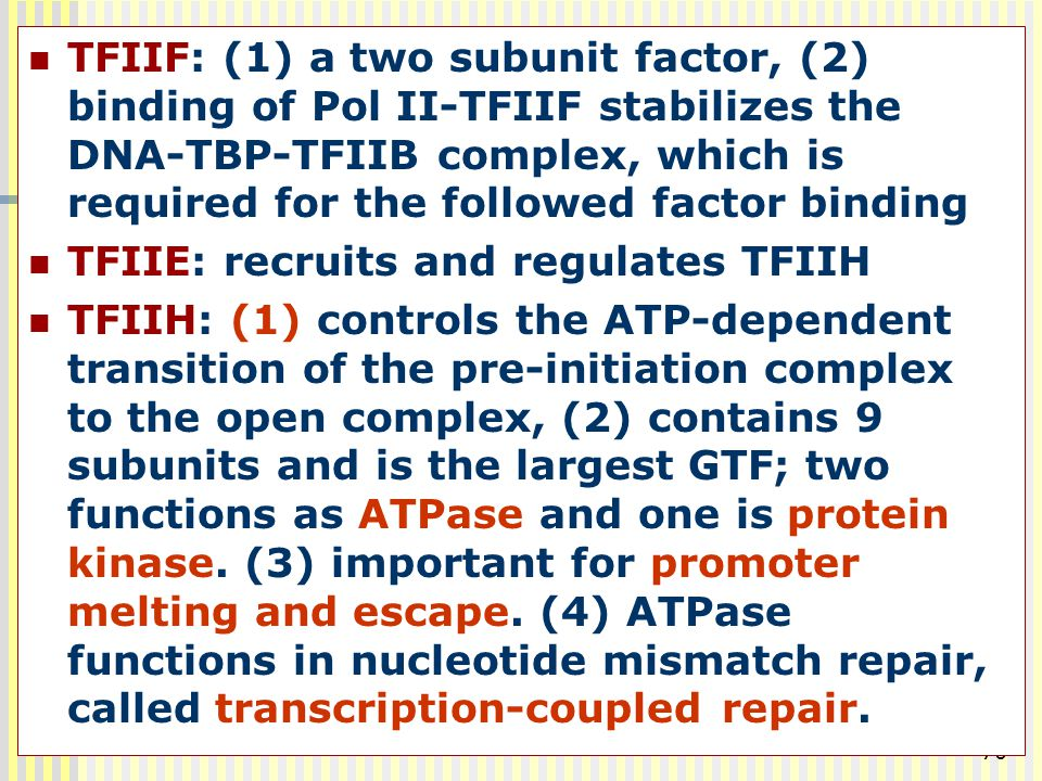 TFIIF: (1) a two subunit factor, (2) binding of Pol II-TFIIF stabilizes the DNA-TBP-TFIIB complex, which is required for the followed factor binding