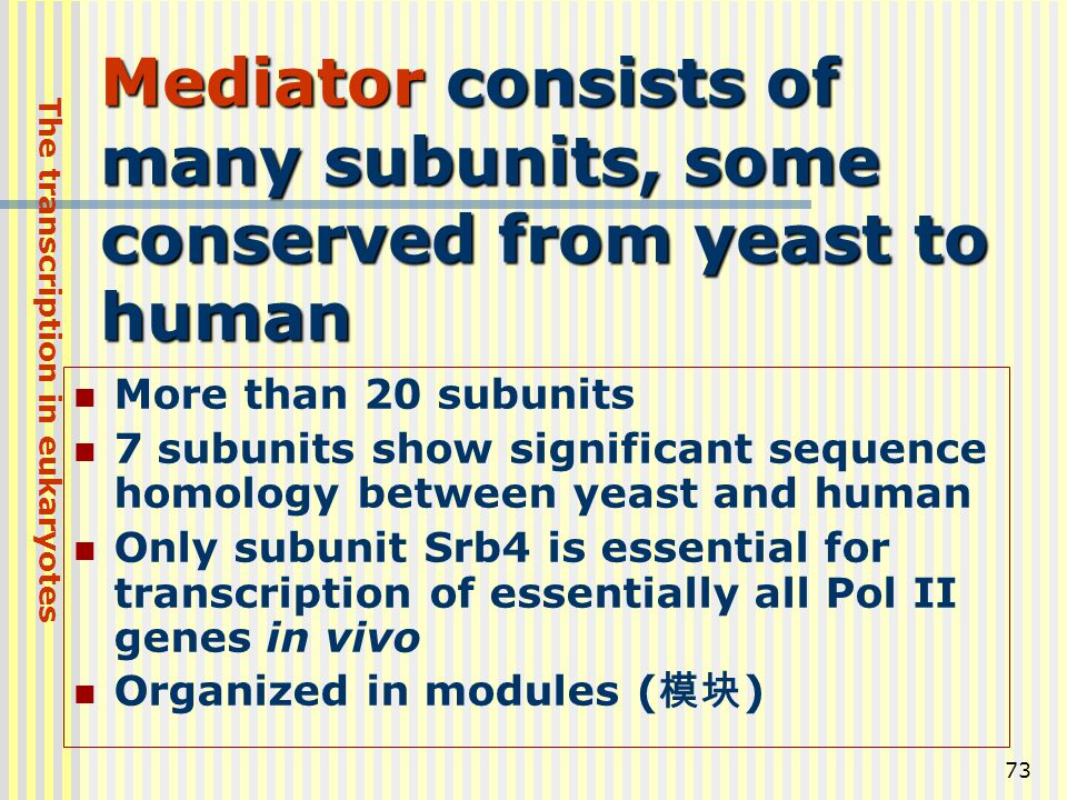 Mediator consists of many subunits, some conserved from yeast to human