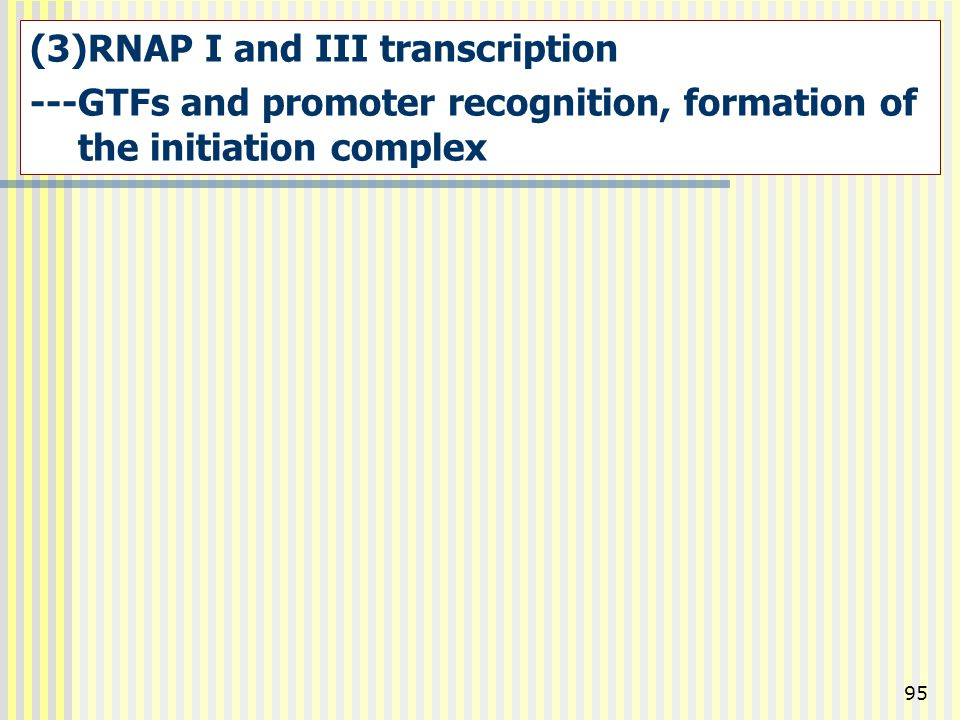 RNAP I and III transcription