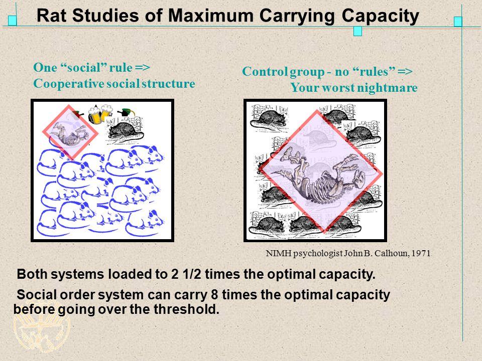 Rat Studies of Maximum Carrying Capacity