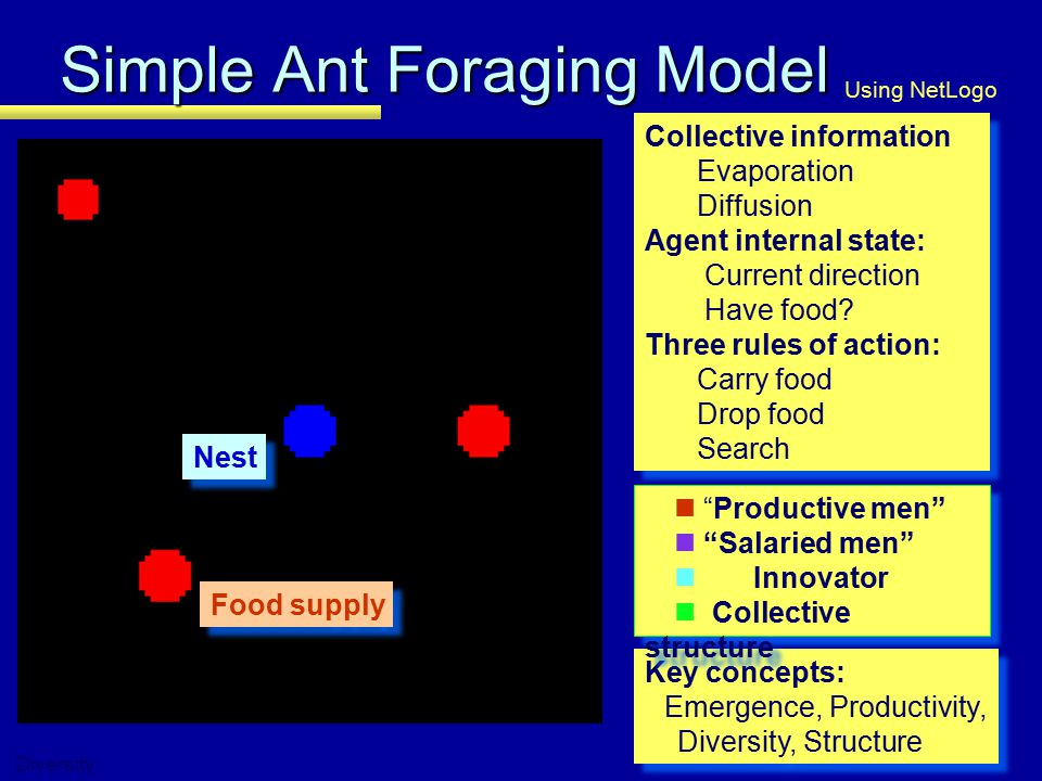 Simple Ant Foraging Model