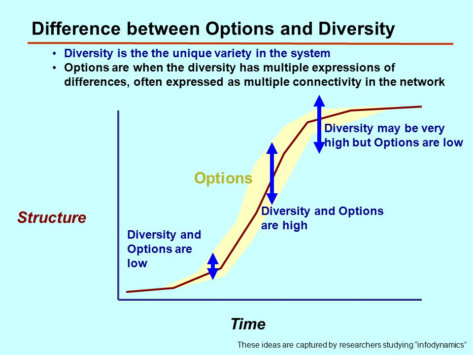 Difference between Options and Diversity