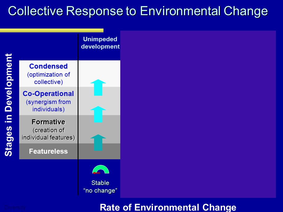 Collective Response to Environmental Change