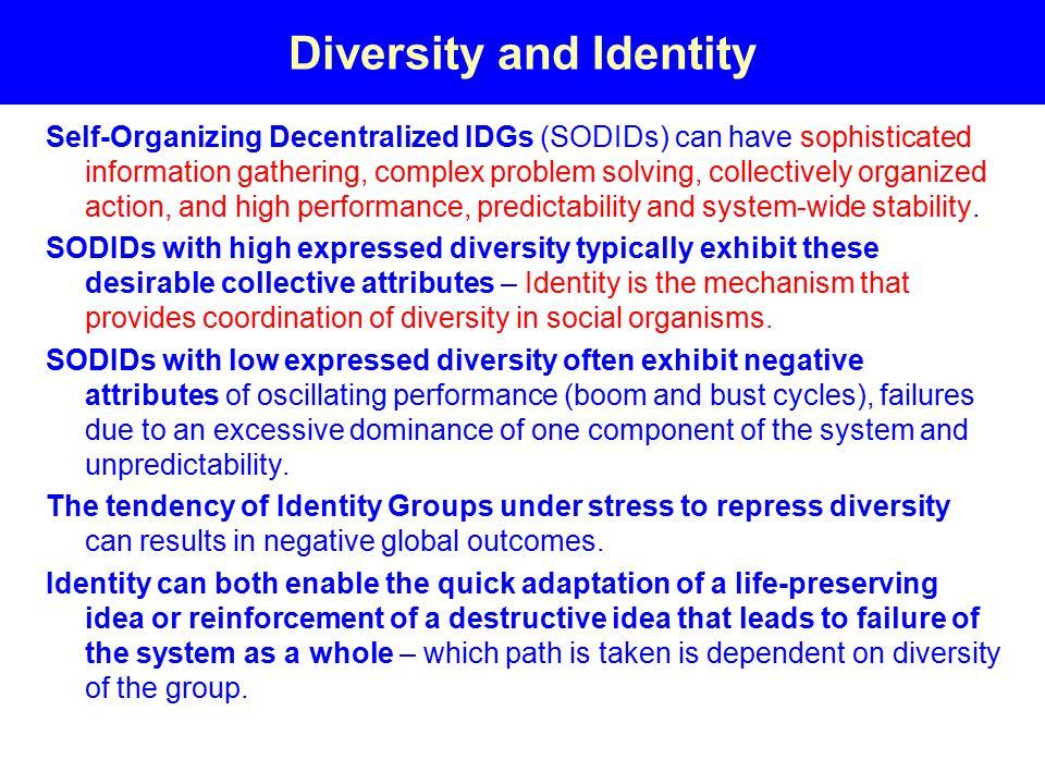 Diversity and Identity