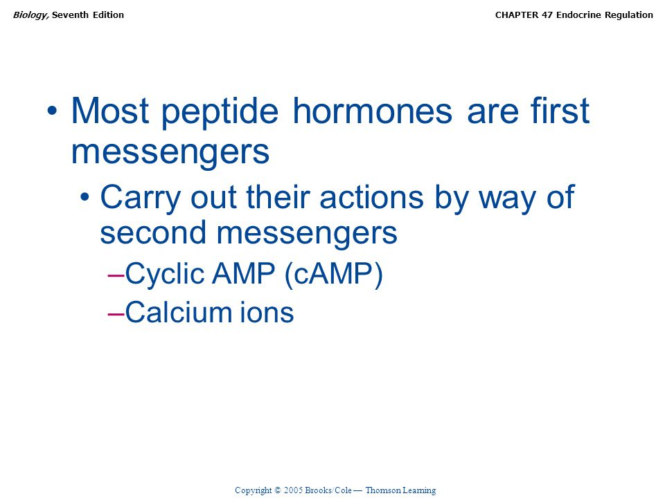 Most peptide hormones are first messengers