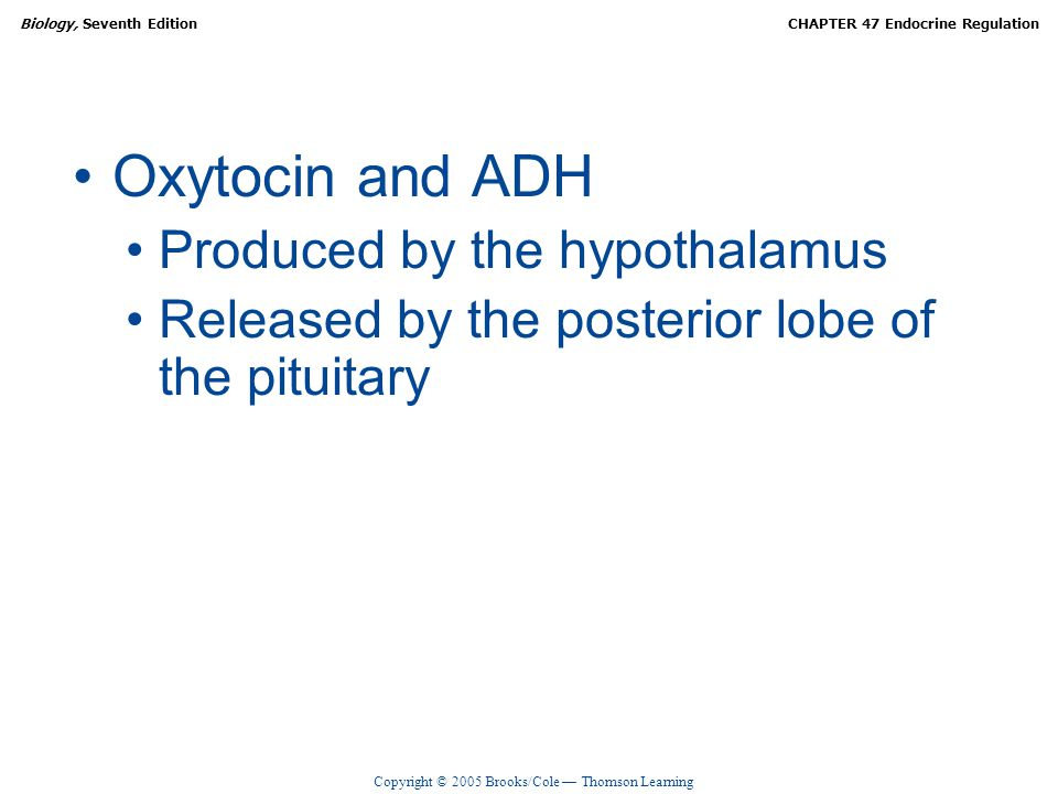 Oxytocin and ADH Produced by the hypothalamus