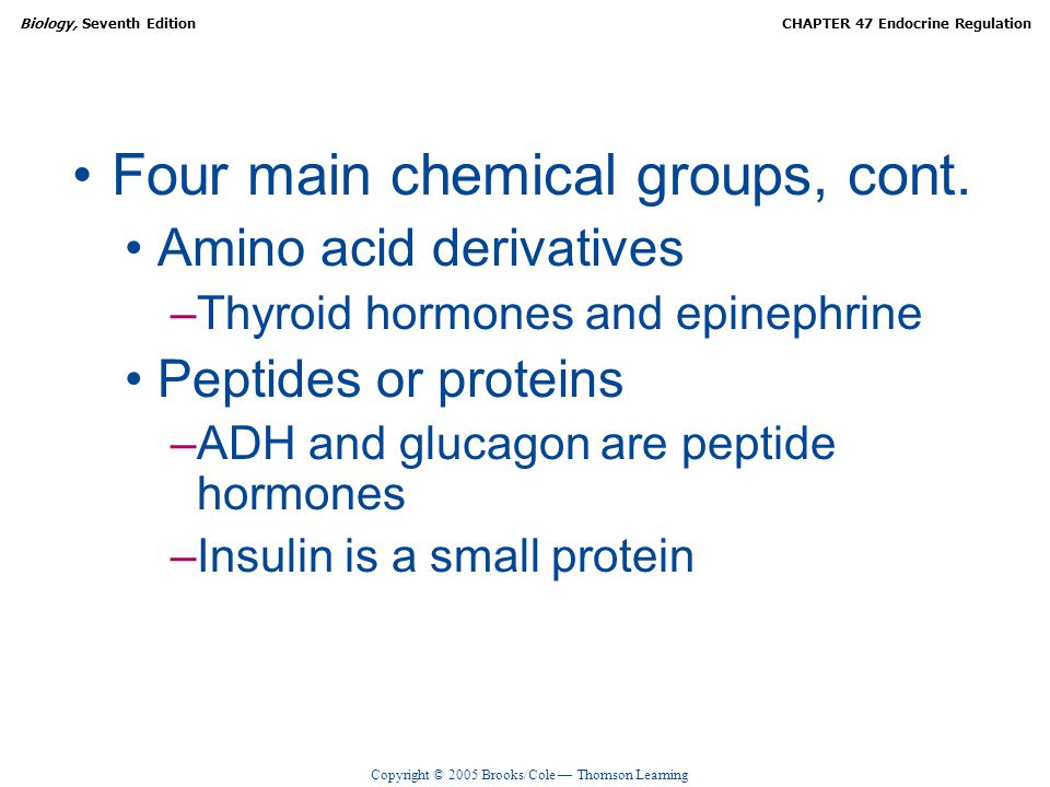 Four main chemical groups, cont.