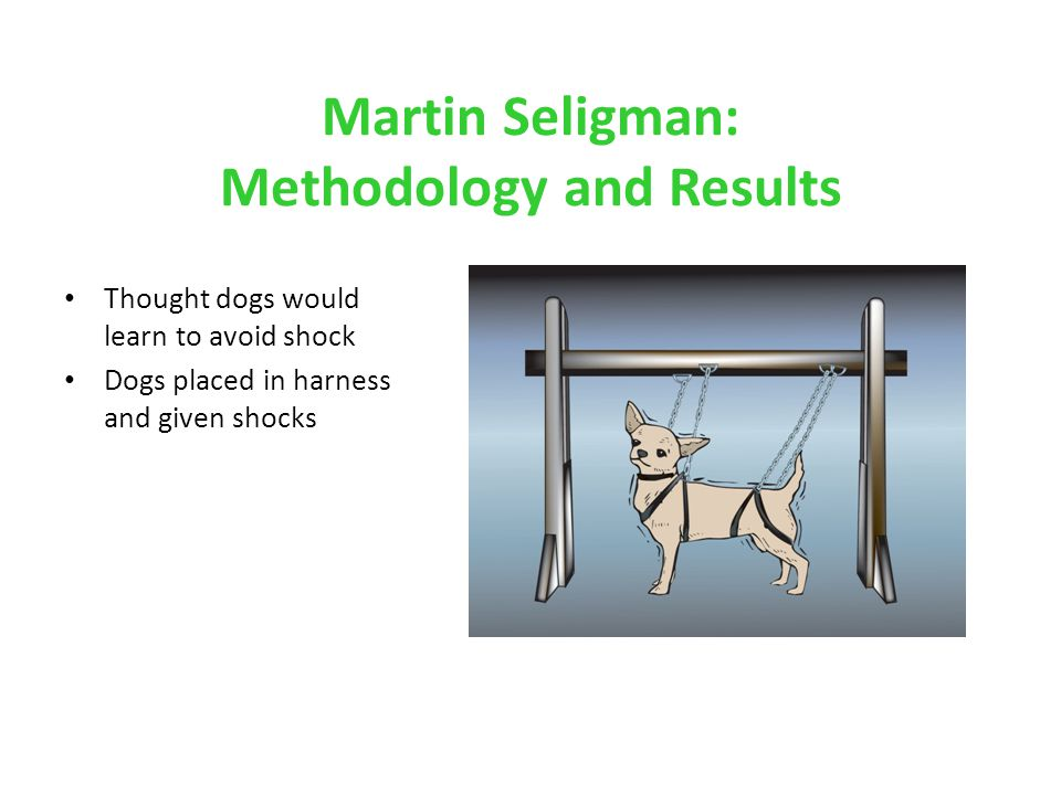 Martin Seligman: Methodology and Results