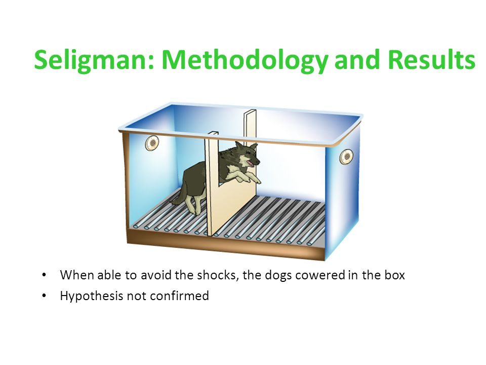 Seligman: Methodology and Results