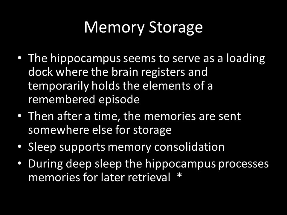 Memory Storage The hippocampus seems to serve as a loading dock where the brain registers and temporarily holds the elements of a remembered episode.