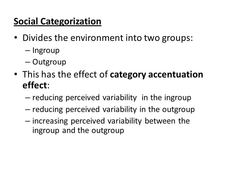 Social Categorization