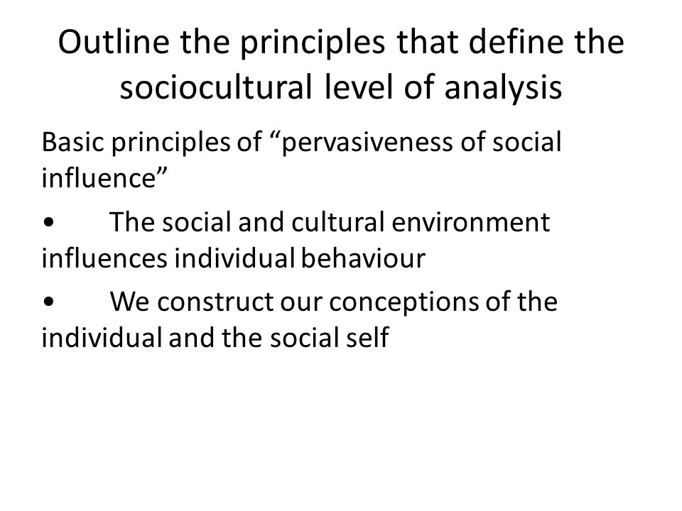 Outline the principles that define the sociocultural level of analysis