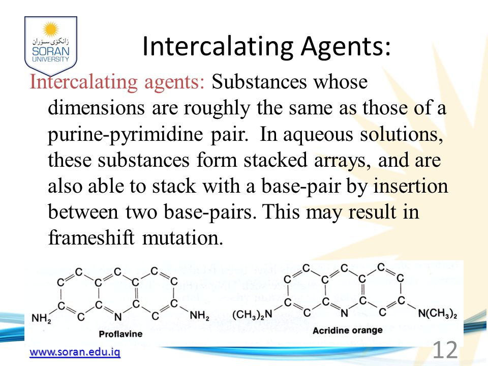 Intercalating Agents: