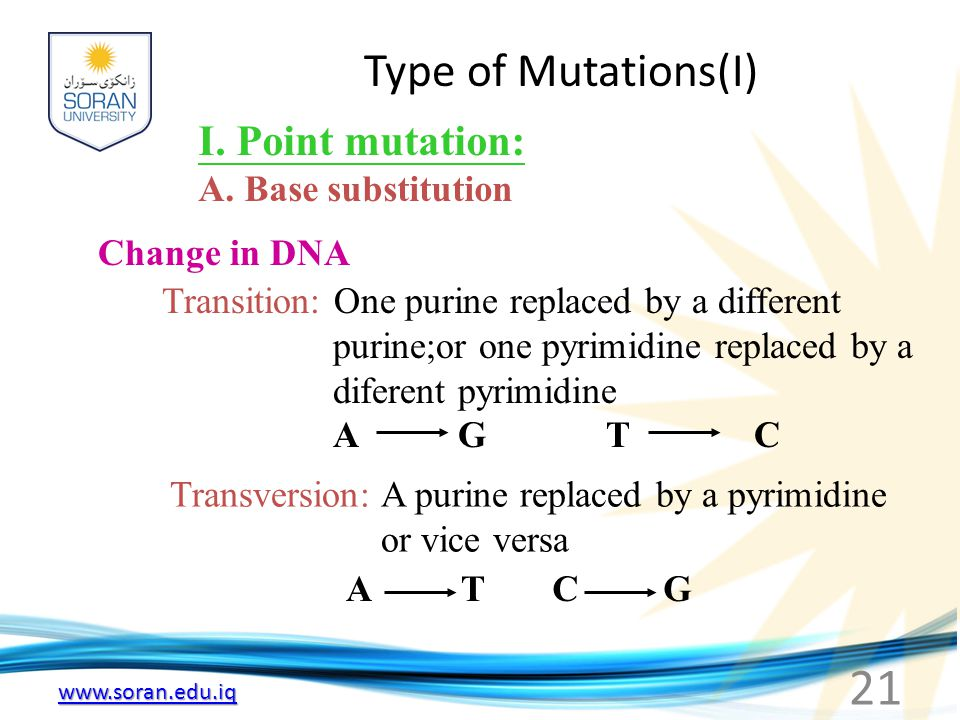 Type of Mutations(I) I. Point mutation: A. Base substitution