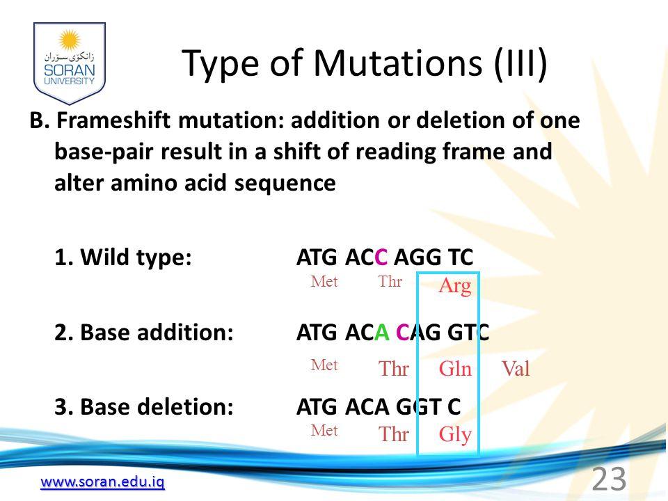 Type of Mutations (III)