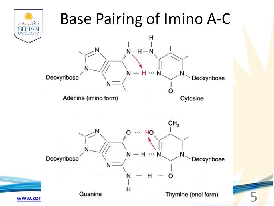 Base Pairing of Imino A-C