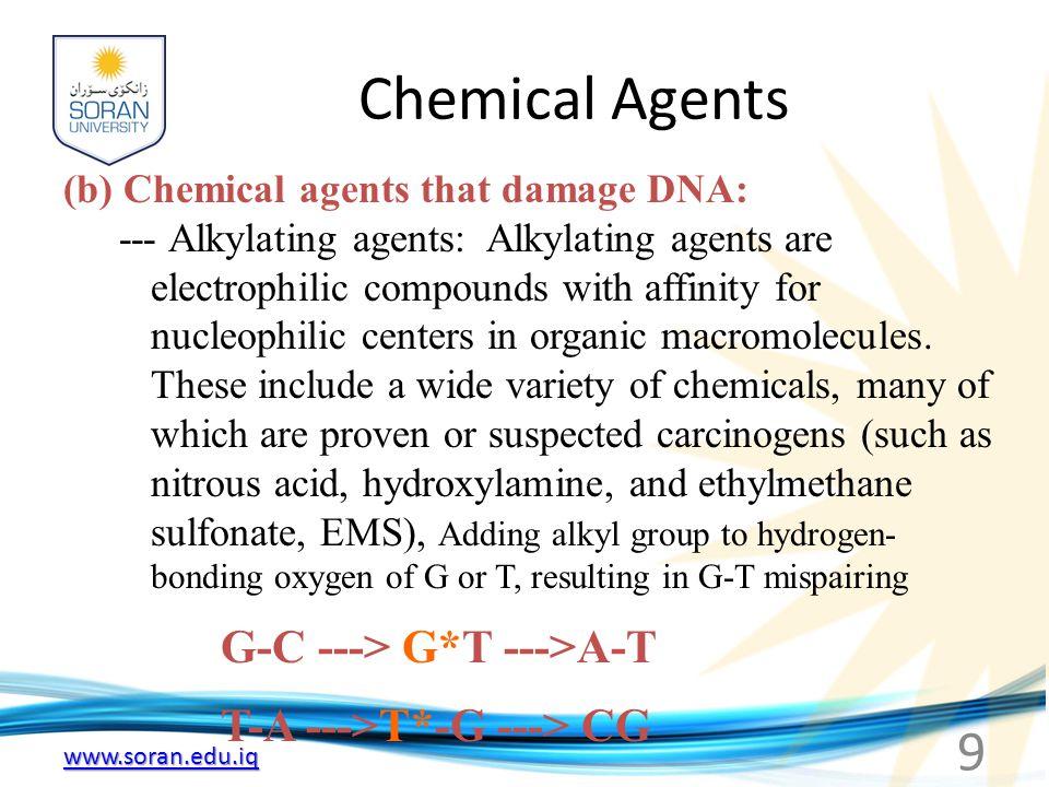 Chemical Agents G-C ---> G*T --->A-T T-A --->T*-G ---> CG