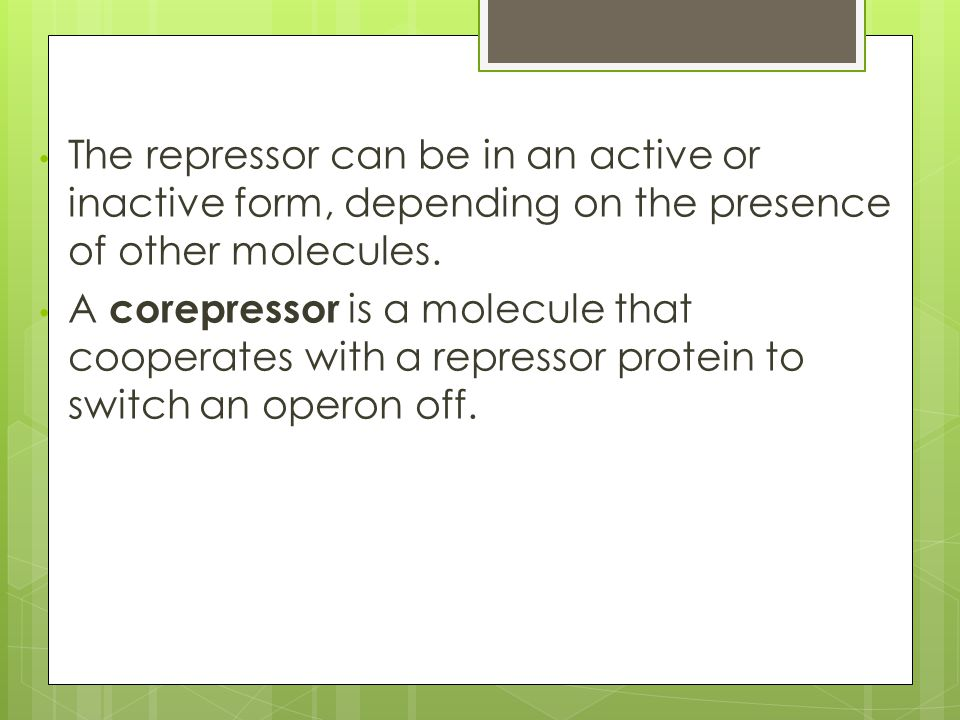 The repressor can be in an active or inactive form, depending on the presence of other molecules.