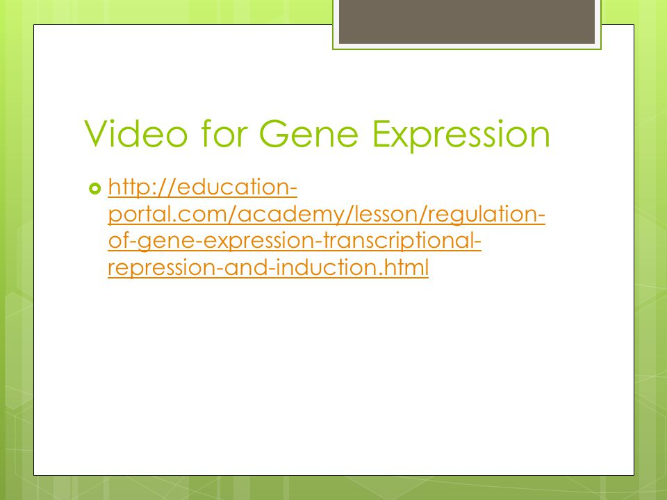 Video for Gene Expression
