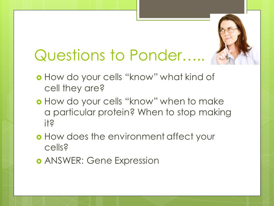Questions to Ponder….. How do your cells know what kind of cell they are