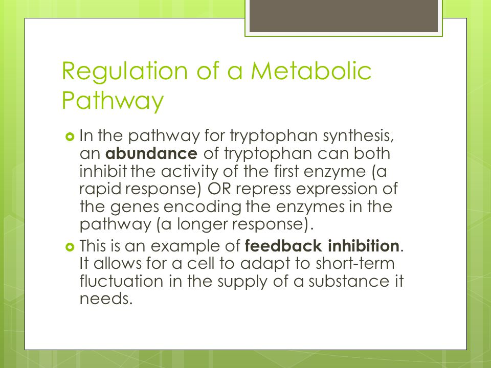 Regulation of a Metabolic Pathway