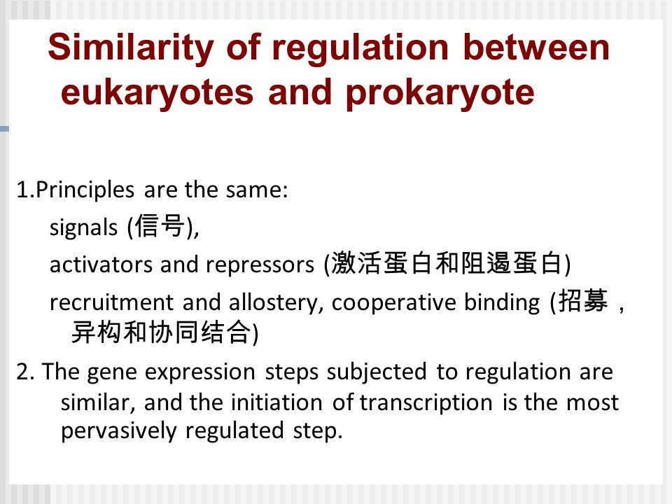 Similarity of regulation between eukaryotes and prokaryote