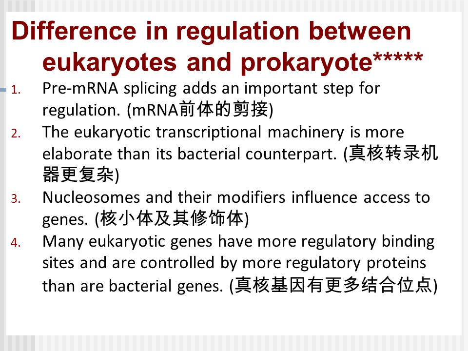 Difference in regulation between eukaryotes and prokaryote*****