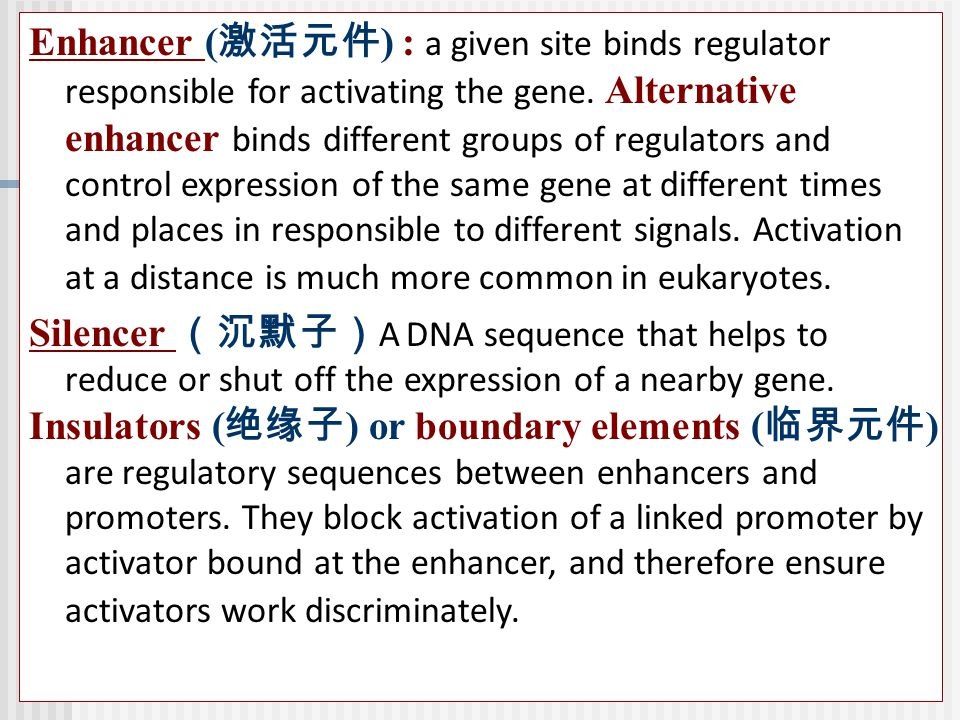 Enhancer (激活元件) : a given site binds regulator responsible for activating the gene. Alternative enhancer binds different groups of regulators and control expression of the same gene at different times and places in responsible to different signals. Activation at a distance is much more common in eukaryotes.
