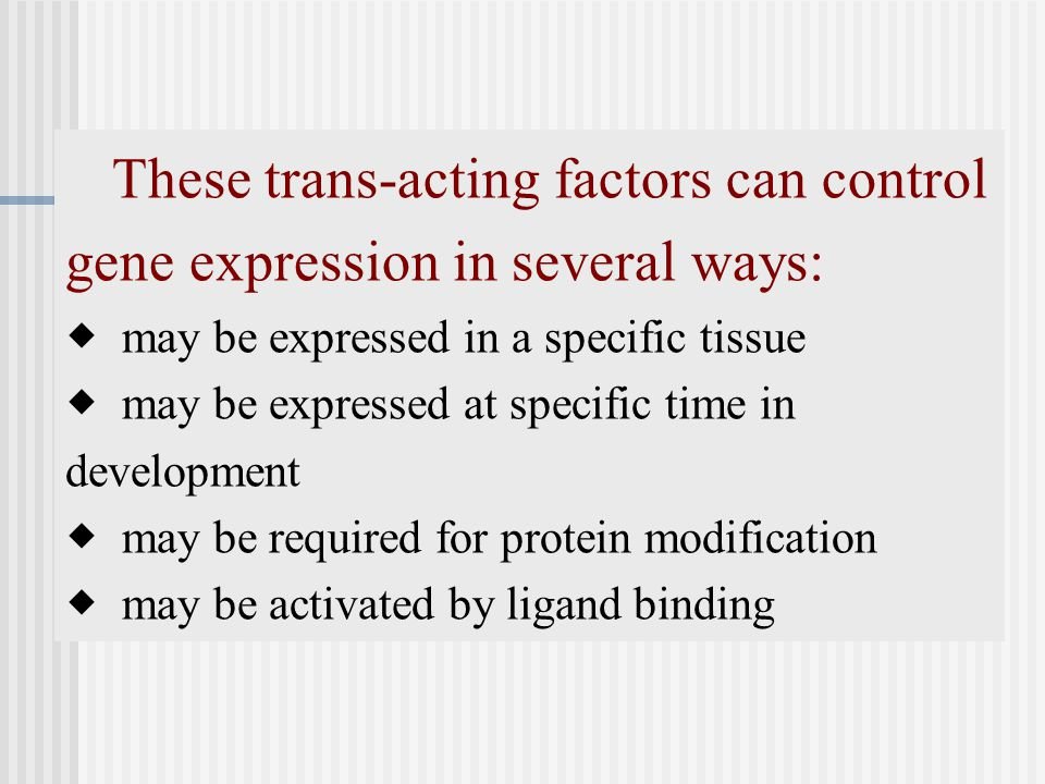 These trans-acting factors can control gene expression in several ways: