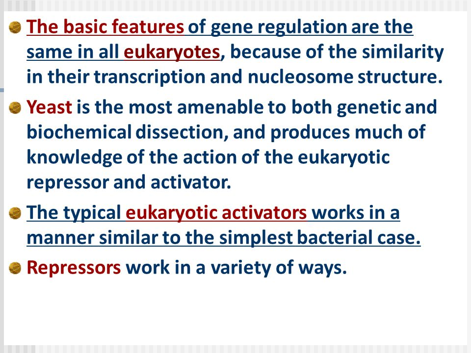 The basic features of gene regulation are the same in all eukaryotes, because of the similarity in their transcription and nucleosome structure.