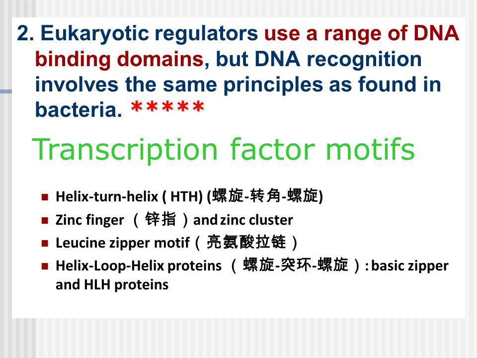 Transcription factor motifs
