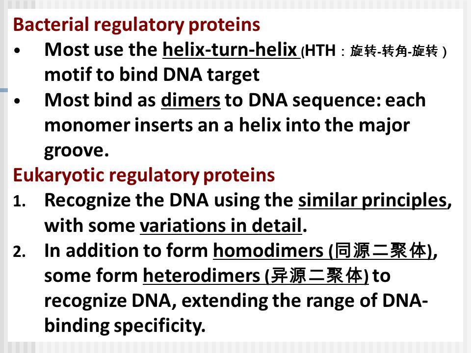 Bacterial regulatory proteins