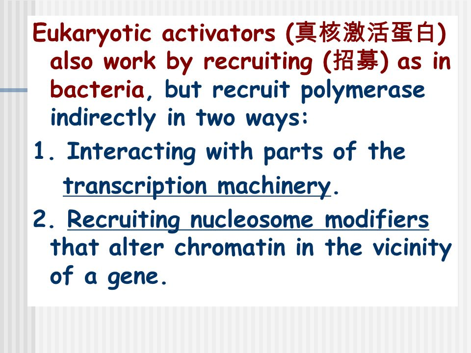 Eukaryotic activators (真核激活蛋白) also work by recruiting (招募) as in bacteria, but recruit polymerase indirectly in two ways: 1.