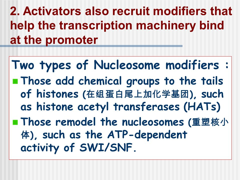 Two types of Nucleosome modifiers :