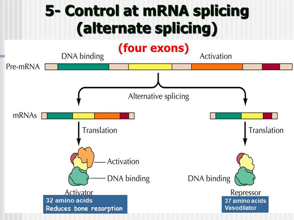 5- Control at mRNA splicing (alternate splicing)
