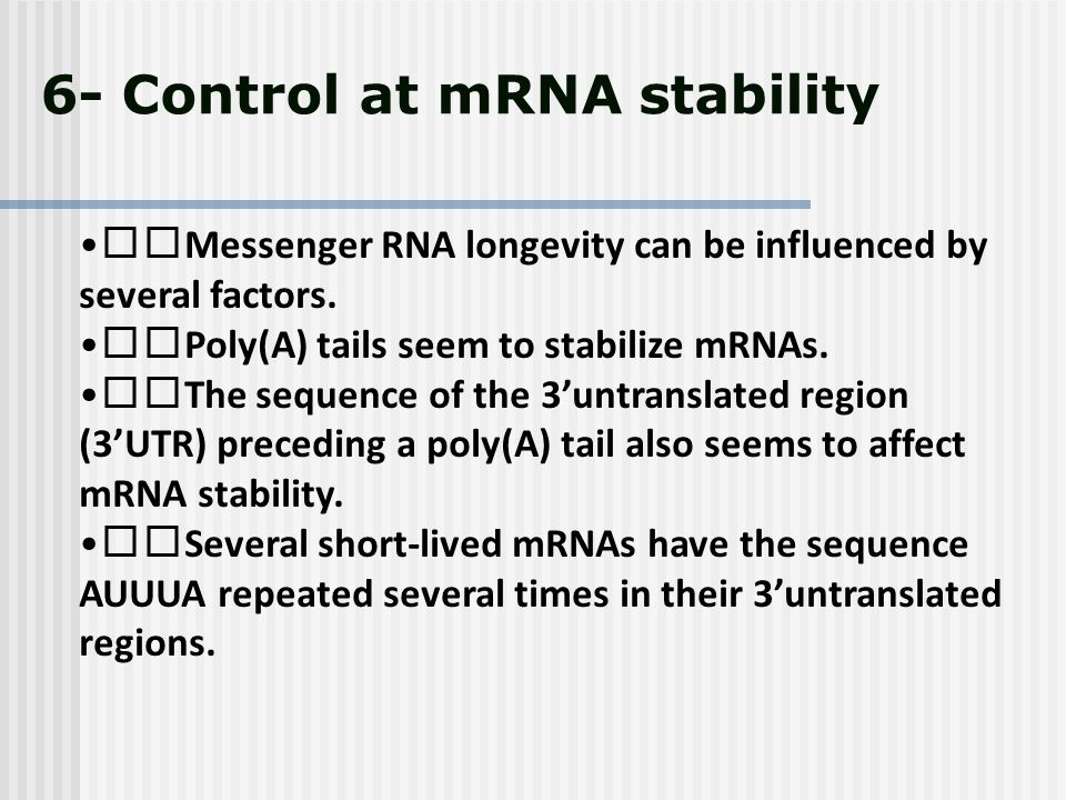6- Control at mRNA stability