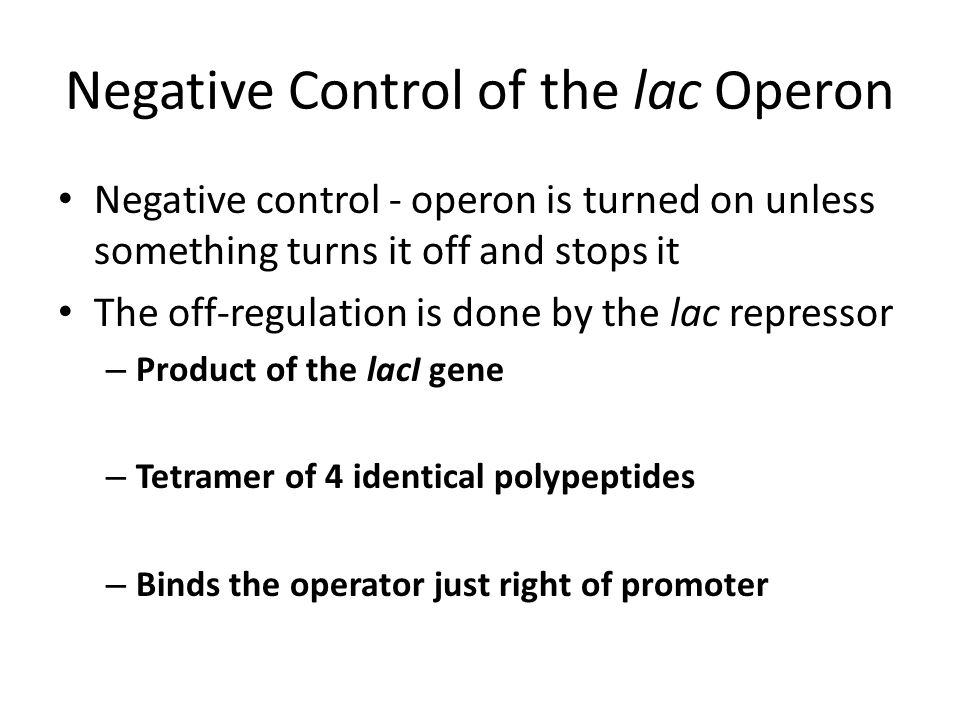 Negative Control of the lac Operon